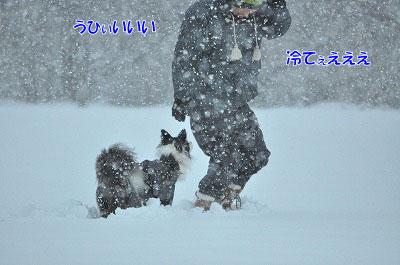 20120103-kur01.jpg