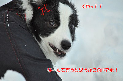 20120104-mun06.jpg