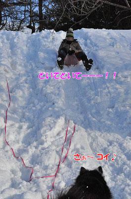 20120108-sor02.jpg