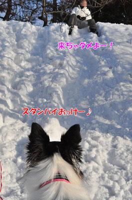 20120108-sor06.jpg