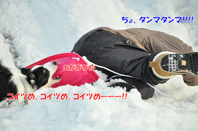 20120125-sor02.jpg