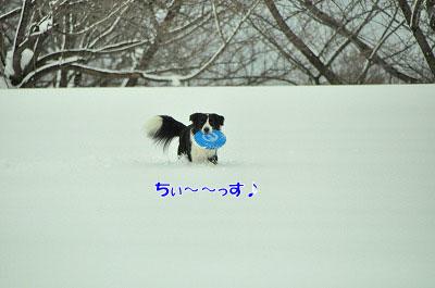 20120212-vin02.jpg