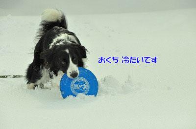 20120212-vin05.jpg