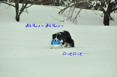 20120212-vin06.jpg