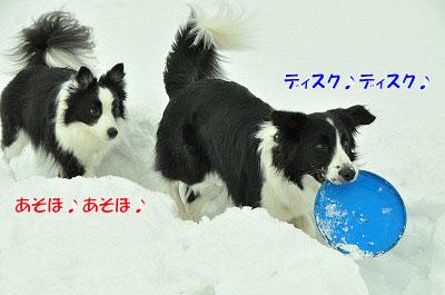 20120212-vin07.jpg