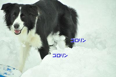 20120212-vin18.jpg