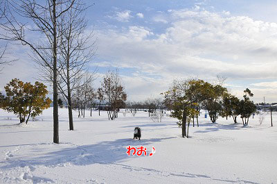20120219-sou01.jpg