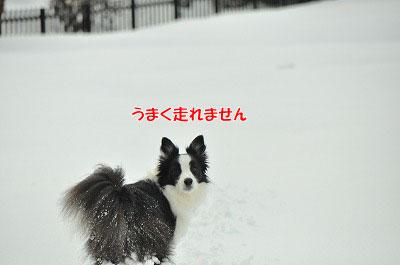 20120226-ake08.jpg