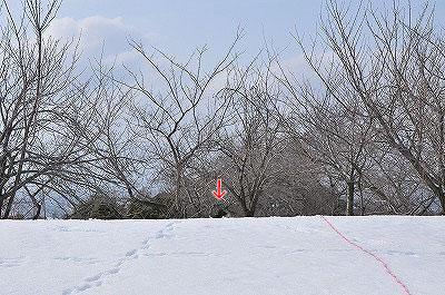 20120304-kai07.jpg