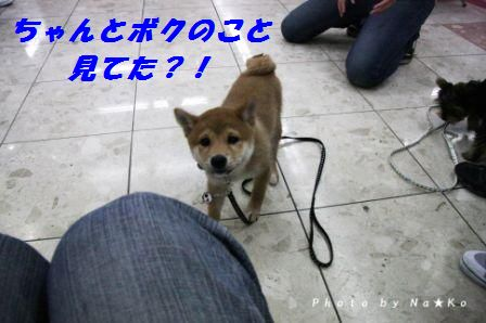 2010050806.jpg