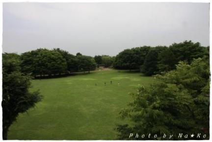 2010062006.jpg