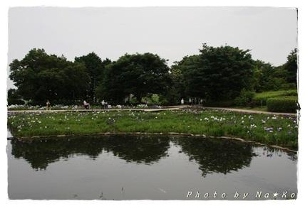 2010062114.jpg