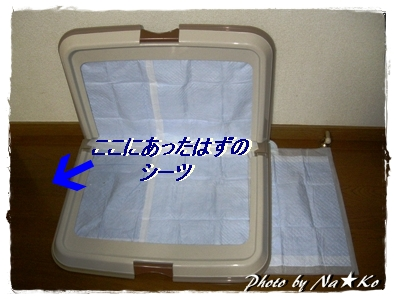 2010080903.jpg