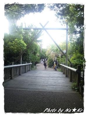 2010082203.jpg