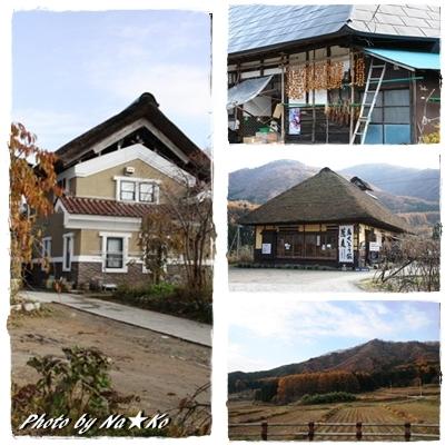 2010111605.jpg