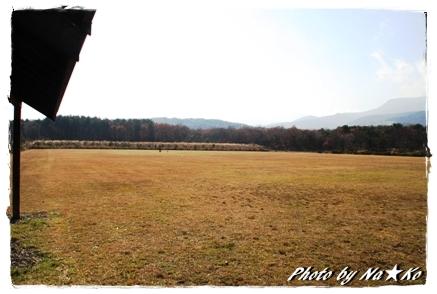 2010111912.jpg