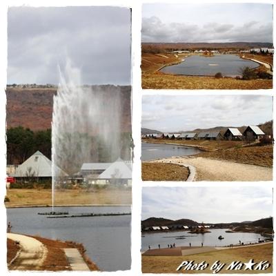 2010112307.jpg