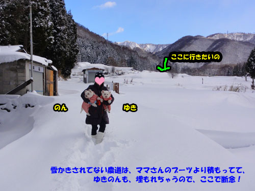 DSC05447.jpg