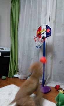 mami*memo-090208_2007~01.jpg