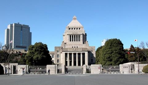 130130 国会議事堂
