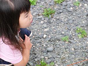 20101010_51.jpg