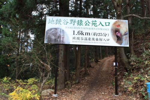 09野猿1