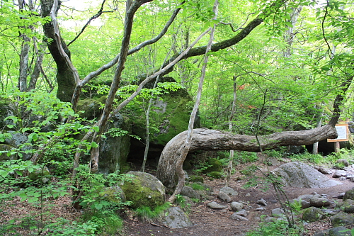 10吐龍の滝4