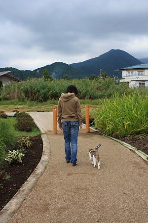 10富士山55