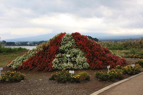 10富士山61