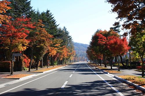 10軽井沢4