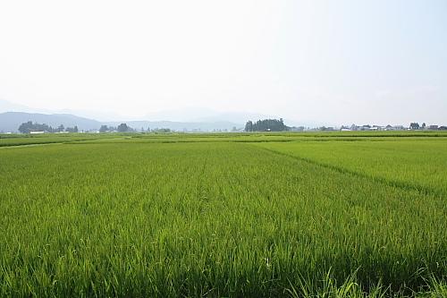 11田沢湖1