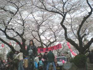 araiyakushi-sakura17.jpg