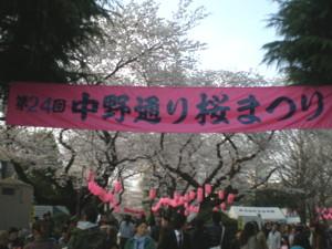 araiyakushi-sakura2.jpg
