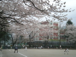 koenji-mabashi-park49.jpg