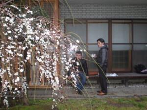 saginomiya-street11.jpg