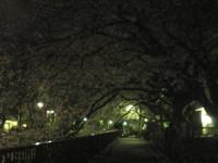 saginomiya-street15.jpg