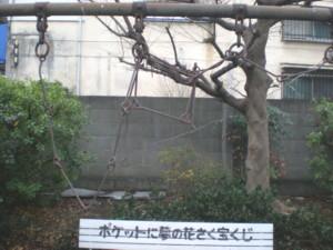 saginomiya-street5.jpg