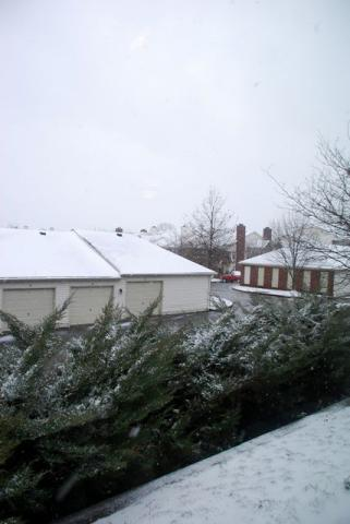 2013年3月25日雪