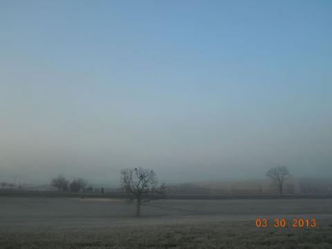 朝は霧が濃くて・・・