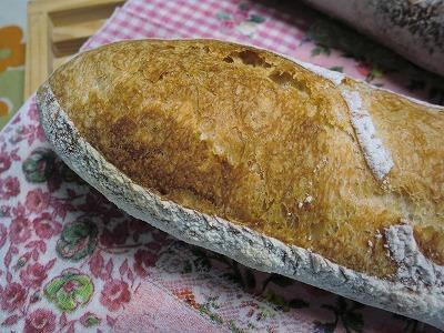 ぷっくりフランスパン