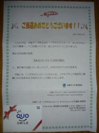クオカード (1,000塩分)