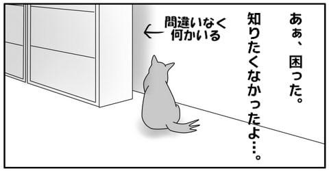 20141031-8.jpg