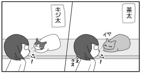 20141113-2.jpg