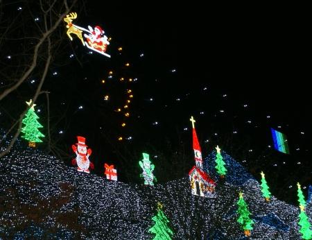 12月5日あしかがフラワーパーク4