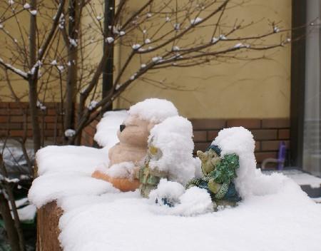2月11日雪