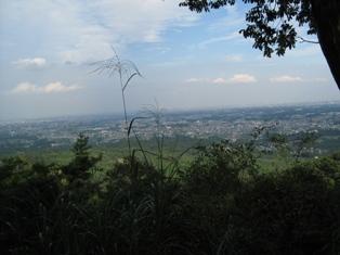20101016-11.jpg
