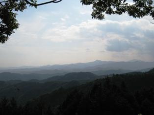 20101016-9.jpg