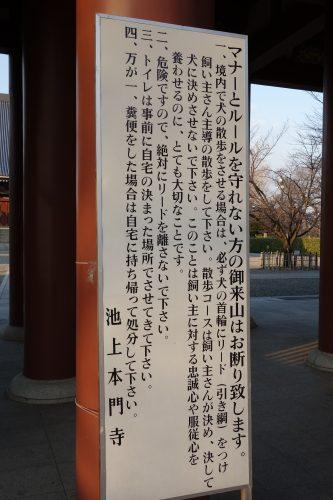 130421_10.jpg