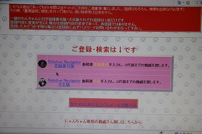 IMG_1197.jpg