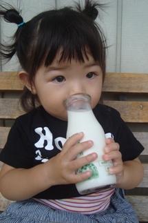 ねね牛乳2